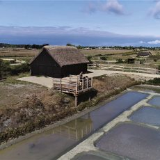 L'écomusée Le Daviaud : une immersion au cœur du marais breton vendéen
