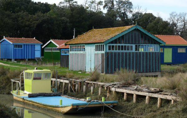 Sur l'île d'Oléron, un site ostréicole riche d'une grande biodiversité