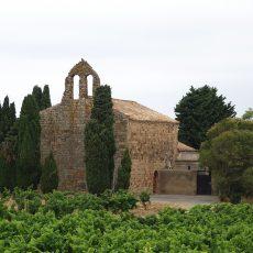 L'Eglise Saint-Martin de Gasparets nichée dans les vignes des Corbières