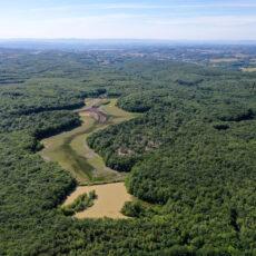 Restauration des zones humides du Grand Albert et du Petit Coquet