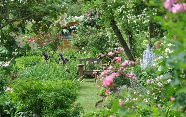 Le jardin de la maison d'André Eve